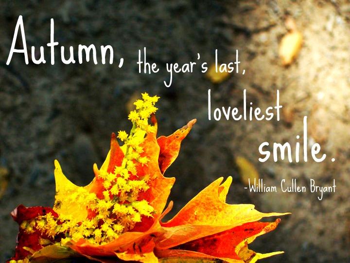 Autumn Quotes Unique Autumn Quotes