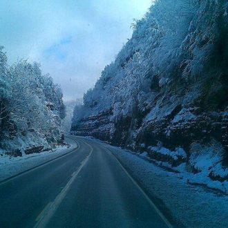 Wordless Wednesday- Kentucky Snow