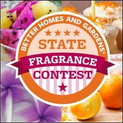 Vote For Mississippi In The Better Homes Gardens State
