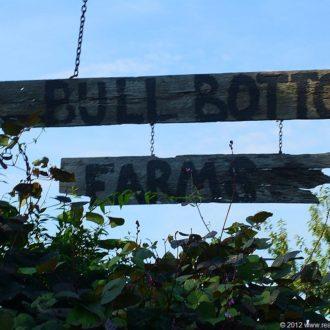 Our Bull Bottom Farms Field Trip