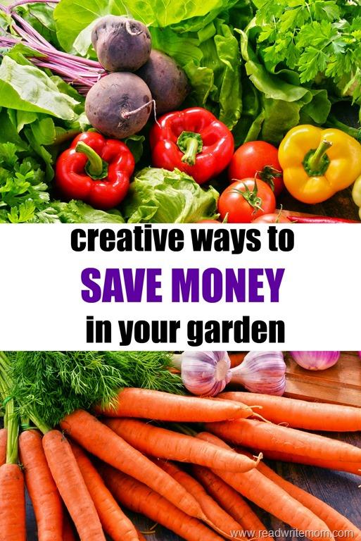 save money in your garden